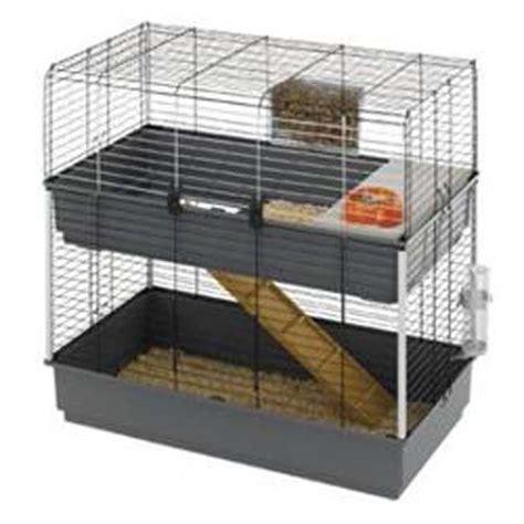 come costruire una gabbia per conigli nani la nuova fattoria conigli nani da compagnia il