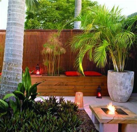 goldfruchtpalme wohnzimmer wohnzimmer palmenarten gt jevelry gt gt inspiration f 252 r