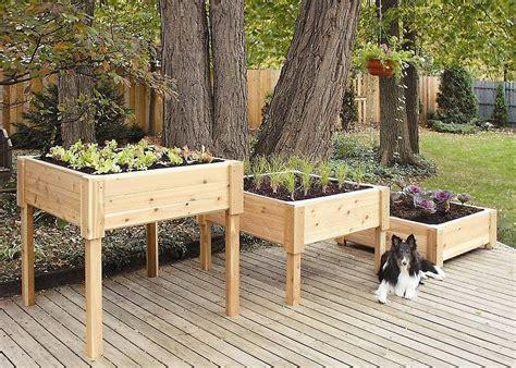 wouldnt   hard    elevated garden