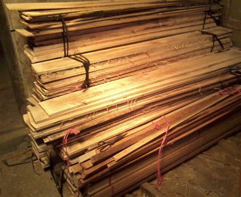 Bibit Sengon Paling Bagus jual kayu albasia papan murah