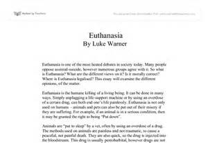 Anti Euthanasia Essay by Euthanasia Right Or Wrong Gcse Religious Studies Philosophy Ethics Marked By Teachers