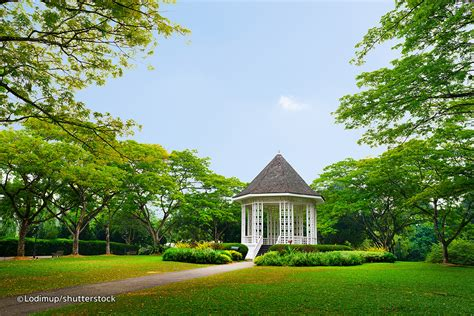 Singapore Botanic Gardens Singapore Singapore Botanic Gardens Singapore Attractions