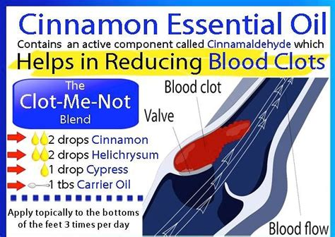 Blood Clots During Detox by 17 Best Images About Doterra Essential S On