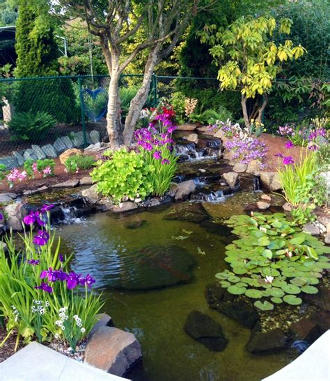 219 best images about ponds on backyard