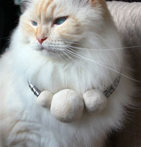 cat hair cat hair jewelry furandsteel