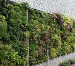 Giardini Verticali Realizzazione by Progettazione E Realizzazione Giardini Garden Bedetti Como