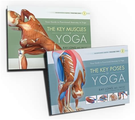 key muscles of yoga 1607432382 scientific keys volume i the key muscles of hatha yoga sport fatare