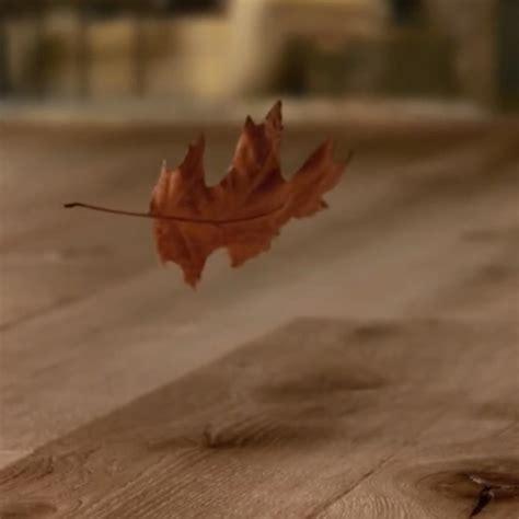 pavimenti bellissimi parquet bellissimi pavimenti in laminato legno e vinile