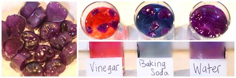 pictures of colour indicator of superdrug vibrance mango copper burst and copper gold red cabbage ph indicator kitchen chemistry for kids