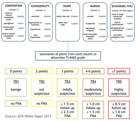 pattern classification ultrasound acr ti rads scoring system image radiopaedia org