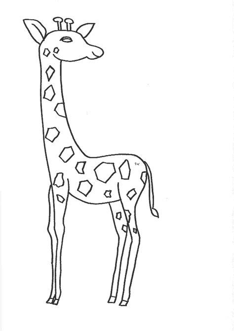 imagenes de jirafas faciles de dibujar imagen zone gt dibujos para colorear gt animales jirafas