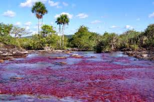 river colors the river ca 241 o cristales colombia feel the planet