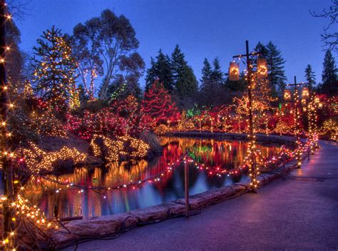 festival of lights at vandusen botanical gardens my city