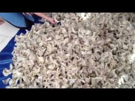 Pelembab Sarang Walet mesin kabut walet doovi