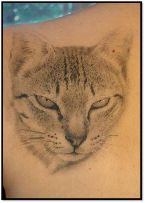 tattoo fixers cat face best 25 cat face tattoos ideas on pinterest tattoo on