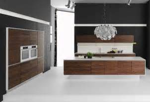 Contemporary Kitchen Cabinets by Modern Kitchen Cabinets For Modern Kitchens Decozilla