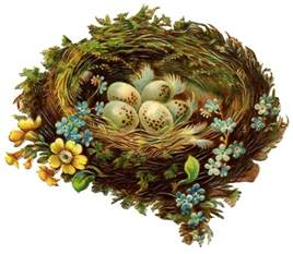 The Nest Vintage Graphic Pretty Nest With Eggs Flowers The