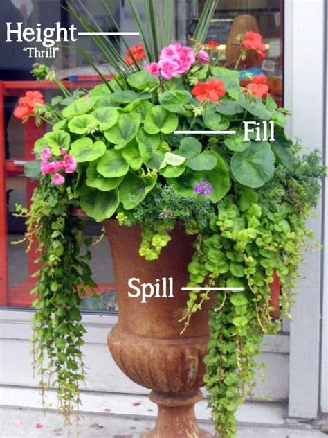 beautiful container garden ideas 17 best ideas about container garden on