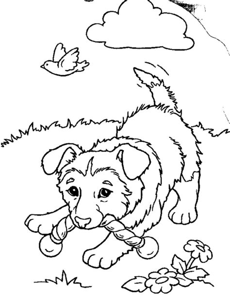 Free Online Coloring Pages Puppies | free printable puppies coloring pages for kids