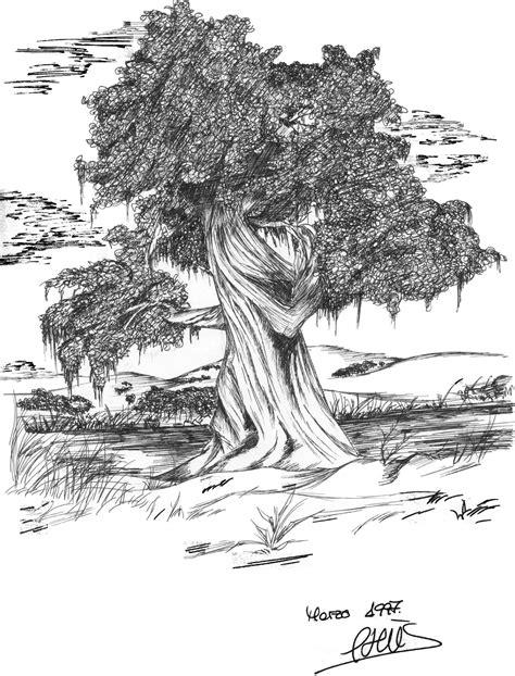 imagenes variadas en blanco y negro recopilacion dibujos blanco y negro recomendado taringa