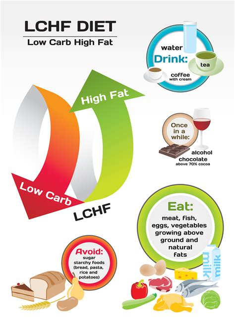 healthy fats on a low carb diet lchf guidelines i can live without sugar