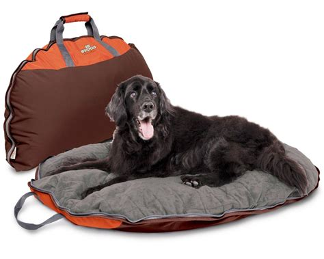 travel dog bed washabledogbed net dog the only creature on earth that