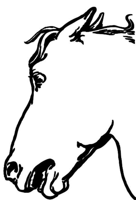 donkey head coloring page donkey head outline