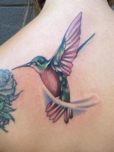 55 amazing aqua bird design best 25 colorful hummingbird ideas on