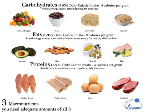 carbohydrates ratio ideal protein to carb ratio