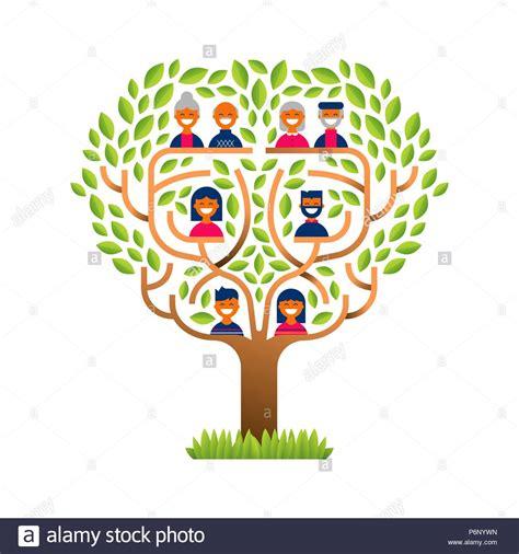Family Tree Genealogy Vector Stock Photos Family Tree Genealogy Vector Stock Images Alamy Genealogical Tree Concept Family Tree Template Stock Vector 565921546