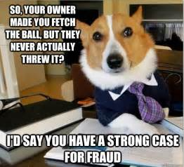Hit The Floor Bloopers - the 14 funniest examples of the lawyer dog meme from memes