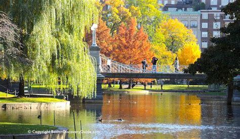 boston weather  november   expect boston