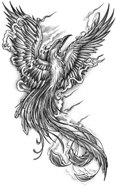 phoenix bird tattoo newhairstylesformen2014 com