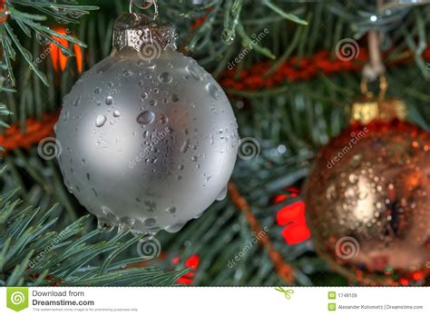 wet christmas royalty free stock images image 1748109