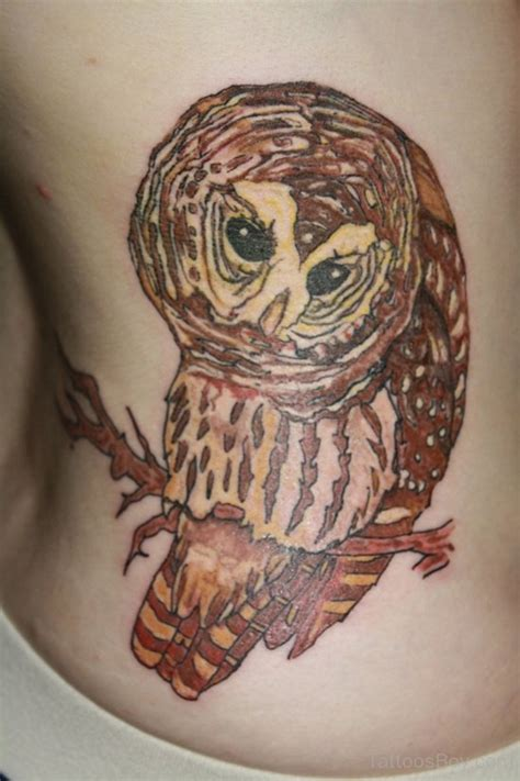owl tattoo stomach stomach tattoos tattoo designs tattoo pictures page 4