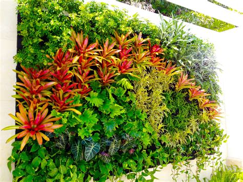 vertical gardens for sale home outdoor decoration