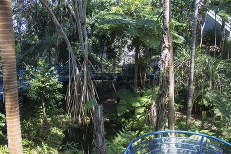 Botanic Garden Playground Indoor Rainforest Picture Of Botanic Park Adelaide Tripadvisor