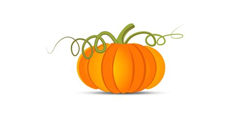 pumpkin vector illustration    graphic cave