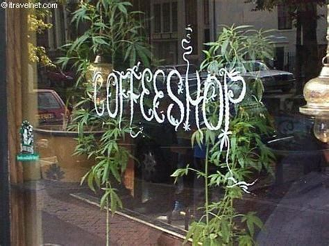 best plant store in amsterdam lifestyle this is not your average quot coffee shop quot coffeeshops are establishments in