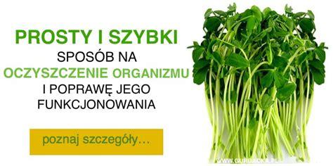 Detox Na Nerki by Archiwa Spos 243 B Na Zdrowa Dieta Odchudzanie I Przepisy