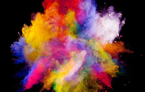 color splash brainlingo loisaida inc