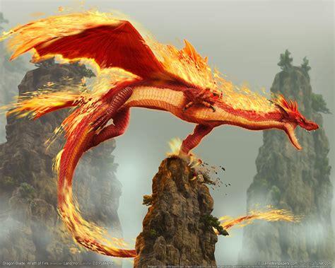 dragon s just my blog quot dragons