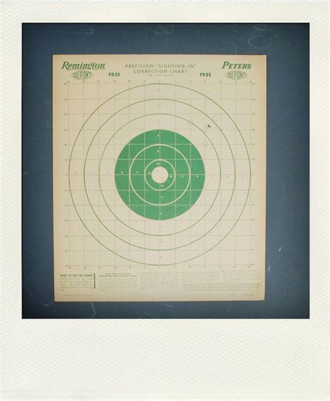 printable paper targets 25 best ideas about shooting targets on pinterest