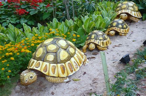 backyard ornaments tortoise figure picture by leebaoren for garden