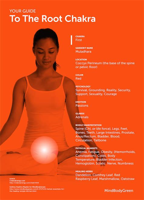 root chakra your guide to the root chakra