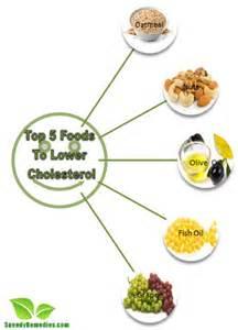 Top 5 foods to lower cholesterol home remedies by speedyremedies