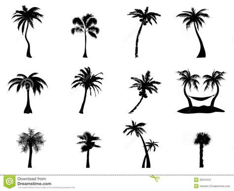 Tree Branch Wall Sticker palm tree silhouette stock image image 26310151