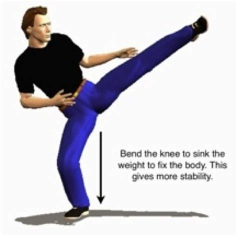 Do You Want To Do Karate In The Garage by Karate Wheel Kick Must Be Done Right To Work