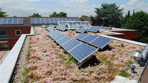 green roof technology green roof service llc modern green roof technology