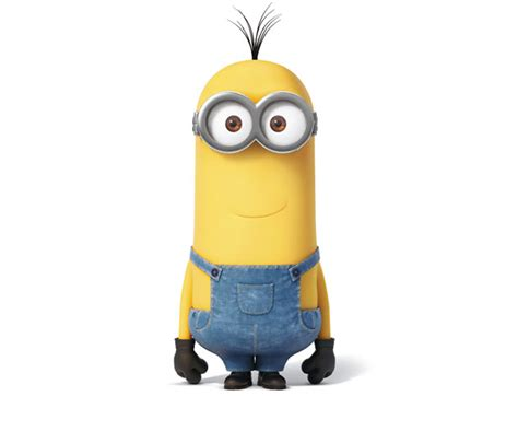 the minion names and who s who list freshmorningquotes